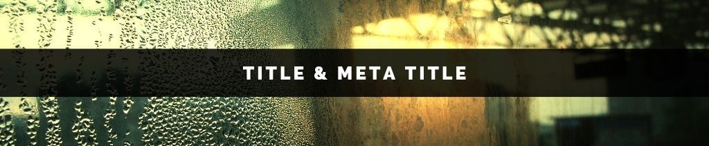 difference between title and meta title | What is Meta Title in SEO